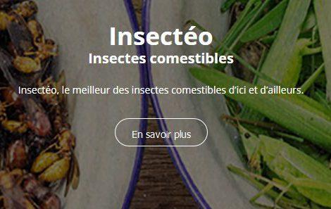 insectes comestibles pour l'apéritif